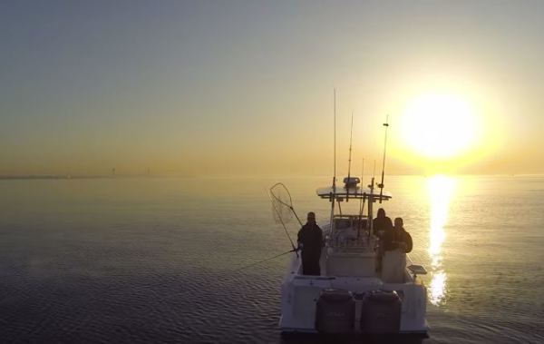 Bass Fishing off Staten Island