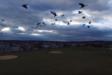 miller-field-drone-footage