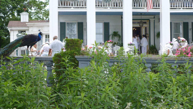 Seguine Mansion Garden Party June 2016